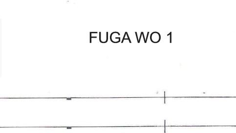 Fuga WO-1